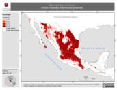 Mapa ilustrativo de Spermophilus mexicanus (Hurón, motocle). Distribución potencial.