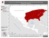 Mapa ilustrativo de Spizella pusilla (gorrión pusila) en época de invernación del Hemisferio Norte. Distribución potencial.