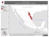 Mapa ilustrativo de Spizella pusilla (gorrión pusila) invierno. Distribución potencial.