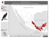 Mapa ilustrativo de Spizaetus tyrannus (águila tirana) residencia permanente. Distribución potencial.