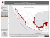 Mapa ilustrativo de Sterna hirundo (charrán común) tránsito. Distribución potencial.
