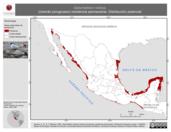 Mapa ilustrativo de Gelochelidon nilotica (charrán picogrueso) residencia permanente. Distribución potencial.