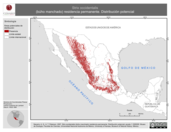 Mapa ilustrativo de Strix occidentalis (búho manchado) residencia permanente. Distribución potencial.