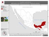 Mapa ilustrativo de Synallaxis erythrothorax (güitío pecho rufo) residencia permanente. Distribución potencial.