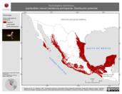 Mapa ilustrativo de Tachybaptus dominicus (zambullidor menor) residencia permanente. Distribución potencial.