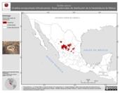 Mapa ilustrativo de Tantilla wilcoxi (Culebra encapuchada chihuahuense). Área de distribución potencial. La proyección citada, es exclusiva para el diseño de esta imagen.