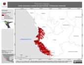 Mapa ilustrativo de Thalurania ridgwayi (ninfa mexicana) residencia permanente. Distribución potencial.