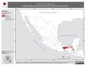 Mapa ilustrativo de Thamnistes anabatinus (batará café) residencia permanente. Distribución potencial.