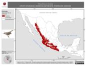 Mapa ilustrativo de Thryothorus sinaloa (chivirín sinaloense) residencia permanente. Distribución potencial.
