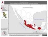 Mapa ilustrativo de Tilmatura dupontii (colibrí cola pinta) residencia permanente. Distribución potencial.