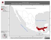 Mapa ilustrativo de Tinamus major (tinamú mayor) residencia permanente. Distribución potencial.