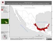 Mapa ilustrativo de Tlalocohyla picta (Rana de árbol pintada). Área de distribución potencial. La proyección citada, es exclusiva para el diseño de esta imagen.