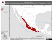 Mapa ilustrativo de Tlalocohyla smithii (Rana de árbol mexicana enana). Área de distribución potencial. La proyección citada, es exclusiva para el diseño de esta imagen.