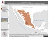 Mapa ilustrativo de Toxostoma curvirostre (cuitlacoche pico curvo) usando sitios con y sin clima extremo. Distribución Potencial