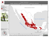 Mapa ilustrativo de Trogon mexicanus (trogón mexicano) residencia permanente. Distribución potencial.