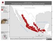 Mapa ilustrativo de Turdus assimilis (mirlo garganta blanca) residencia permanente. Distribución potencial.