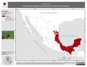 Mapa ilustrativo de Turdus grayi (mirlo pardo) residencia permanente. Distribución potencial.