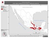 Mapa ilustrativo de Turdus infuscatus (mirlo negro) residencia permanente. Distribución potencial.