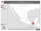 Mapa ilustrativo de Turdus rufitorques (mirlo cuello rufo) residencia permanente. Distribución potencial.