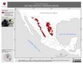 Mapa ilustrativo de Ursus americanus (oso negro americano). Distribución potencial. La proyección citada, es exclusiva para el diseño de esta imagen.
