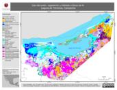 Mapa ilustrativo de Uso del suelo, vegetación y hábitats críticos de la Laguna de Términos, Campeche