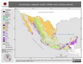 Mapa ilustrativo de Uso del suelo y vegetación, escala 1:250000, serie I (continuo nacional). La proyección citada, es exclusiva para el diseño de esta imagen.