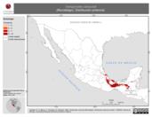 Mapa ilustrativo de Vampyrodes caraccioli (Murciélago). Distribución potencial.