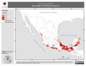 Mapa ilustrativo de Vampyressa thyone (Murciélago). Distribución potencial. La proyección citada, es exclusiva para el diseño de esta imagen.