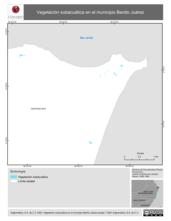 Mapa ilustrativo de Vegetación subacuática en el municipio Benito Juárez