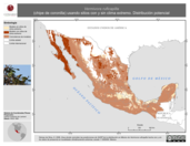 Mapa ilustrativo de Vermivora ruficapilla (chipe de coronilla) usando sitios con y sin clima extremo. Distribución Potencial