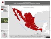 Mapa ilustrativo de Vermivora celata (chipe corona anaranjada) invierno. Distribución potencial.