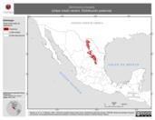 Mapa ilustrativo de Vermivora crissalis (chipe crisal) verano. Distribución potencial.