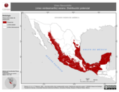 Mapa ilustrativo de Vireo flavoviridis (vireo verdeamarillo) verano. Distribución potencial.