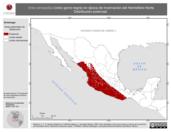 Mapa ilustrativo de Vireo atricapillus (vireo gorra negra) en época de invernación del Hemisferio Norte. Distribución potencial.