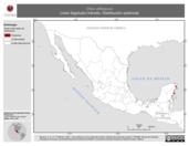 Mapa ilustrativo de Vireo altiloquus (vireo bigotudo) tránsito. Distribución potencial.