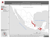 Mapa ilustrativo de Vireo leucophrys (vireo gorra parda) residencia permanente. Distribución potencial.