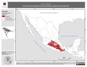 Mapa ilustrativo de Vireo nelsoni (vireo enano) residencia permanente. Distribución potencial.