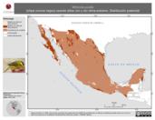 Mapa ilustrativo de Wilsonia pusilla (chipe corona negra) usando sitios con y sin clima extremo. Distribución Potencial