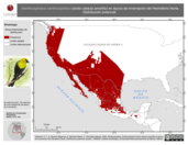 Mapa ilustrativo de Xanthocephalus xanthocephalus (tordo cabeza amarilla) en época de invernación del Hemisferio Norte. Distribución potencial.