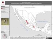 Mapa ilustrativo de Xenospiza baileyi (gorrión serrano). Distribución potencial. La proyección citada, es exclusiva para el diseño de esta imagen.