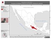 Mapa ilustrativo de Xenotriccus mexicanus (mosquero del Balsas) residencia permanente. Distribución potencial.
