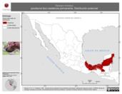 Mapa ilustrativo de Xenops minutus (picolezna liso) residencia permanente. Distribución potencial.