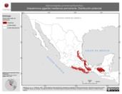 Mapa ilustrativo de Xiphocolaptes promeropirhynchus (trepatroncos gigante) residencia permanente. Distribución potencial.