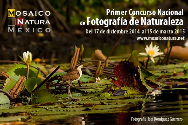 PRIMER CONCURSO NACIONAL DE FOTOGRAFÍA DE NATURALEZA